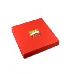 SHASTINA PRALINEUM 25er Box – Himmlische Beere Himbeer Pralinen