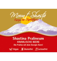 SHASTINA PRALINEUM 9er Box – Himmlische Beere Himbeer Pralinen
