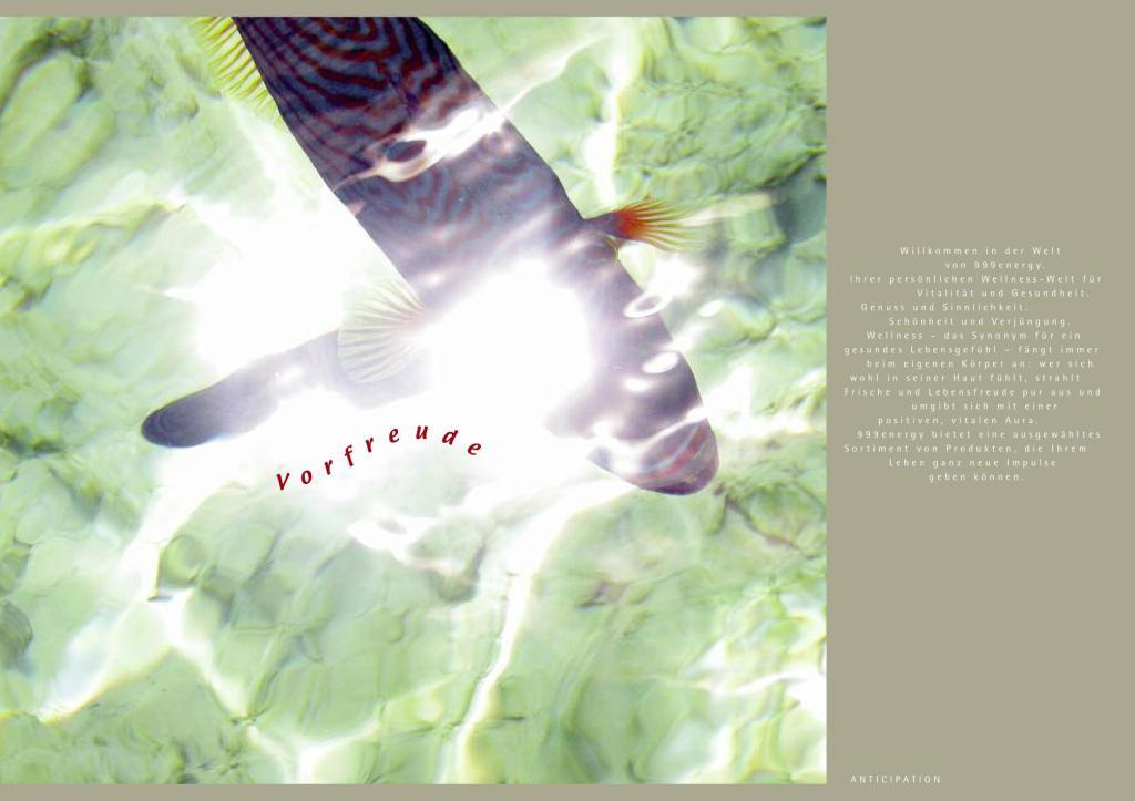 999energy Image Katalog